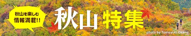 秋山SALE