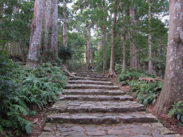 熊野古道 大雲取越(大門坂~小口)