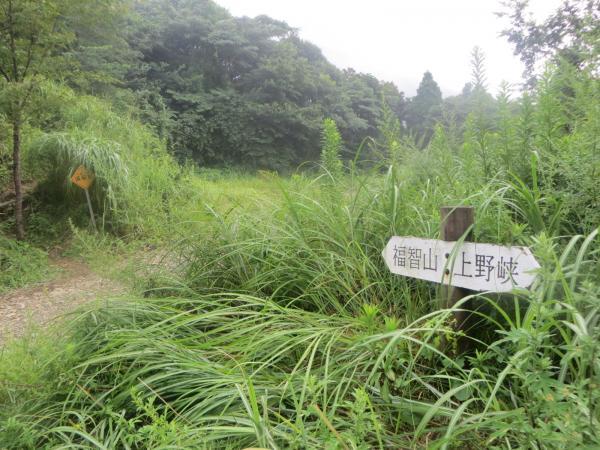 福智山(900.8m)「白糸の滝ルート~上野越ルート」(福岡県福智町)