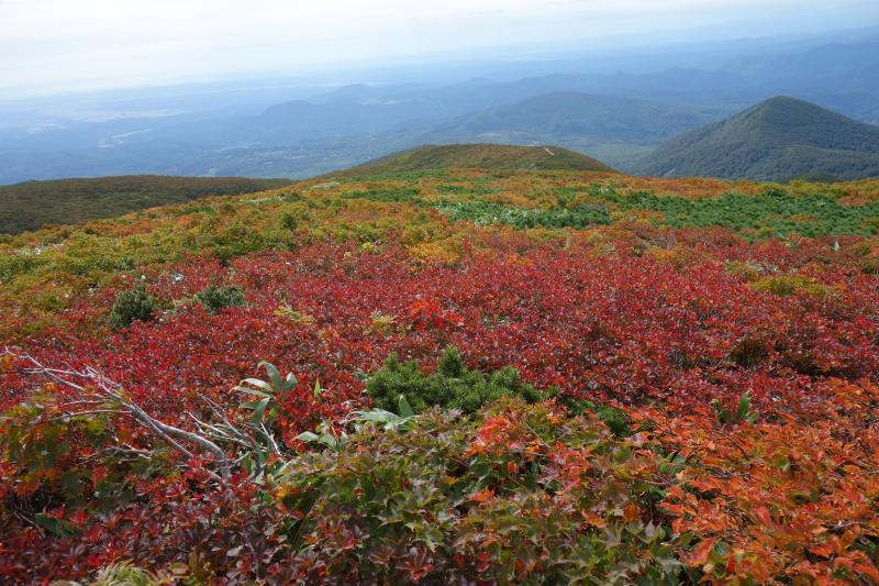 今年も東北へ! 紅葉始まる栗駒山
