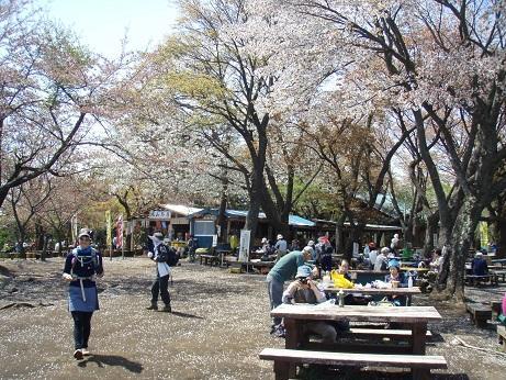 高尾山~城山~日影沢へのバリエーションルート!(東京都)