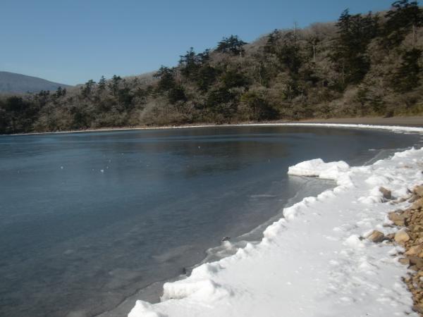 大幡池 冬の景色を見に行こう!...