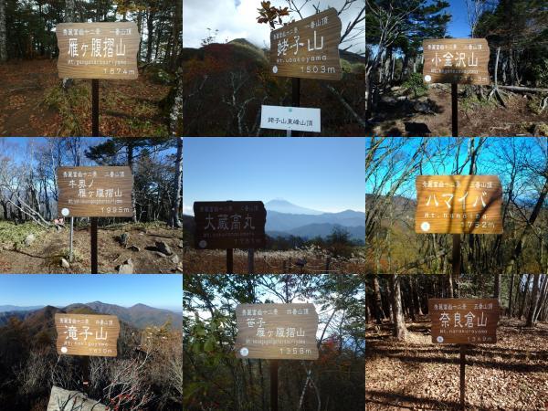 秀麗富嶽十二景 奈良倉山 | 登山レポート | 登山用品・アウトドア用品 ...