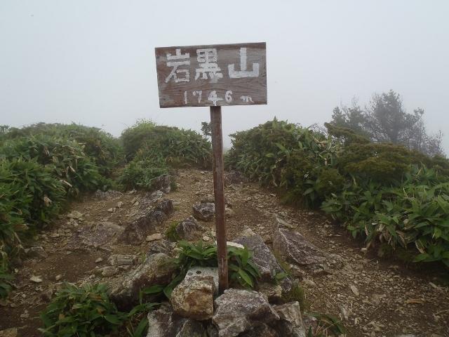 岩黒山~キレンゲショウマに出逢...
