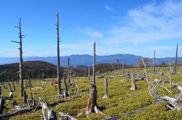 「正木峠」の画像検索結果