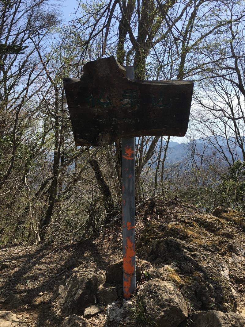 春のハイキングにピッタリ!仏果山・高取山
