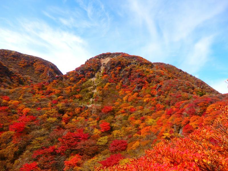三俣山 お鉢まわりで紅葉調査